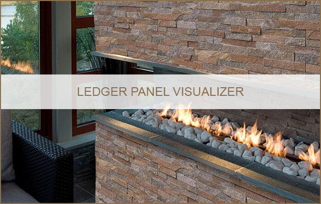 Ledger Panel Visualizer